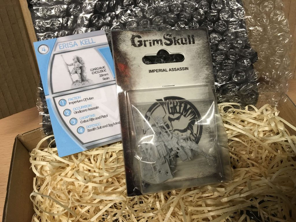 Asset Drop April Box - Grim Skull Imperial Assassin